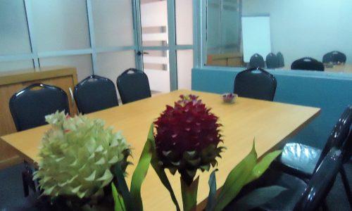 Webhaptic Lagos Viewing Facility Room